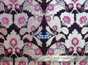 LAMPASSO_Ciniglia