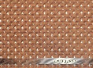LAU_5462-1